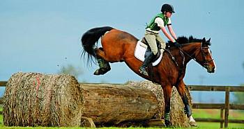 Campamento de equitación